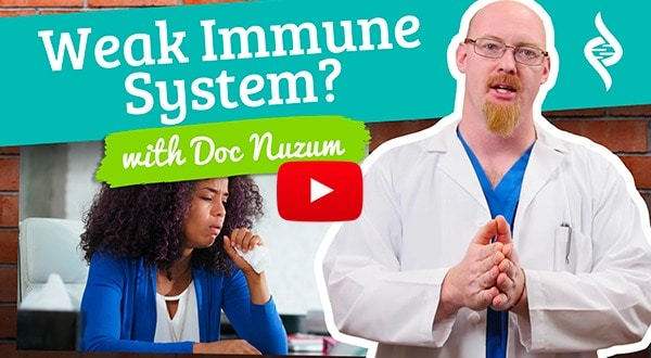 4 signs of a weak immune system with dr. Daniel nuzum