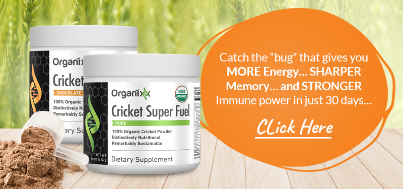Catch the Bug See the Hype around Organixx Cricket Super Fuel