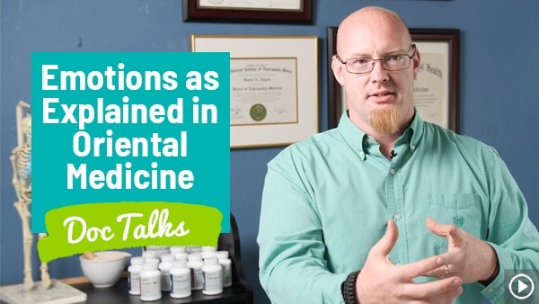 Emotions As Explained in Oriental Medicine Doc Talks with Dr. Daniel Nuzum