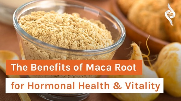 The Benefits of Maca Root for Hormonal Health & Vitality