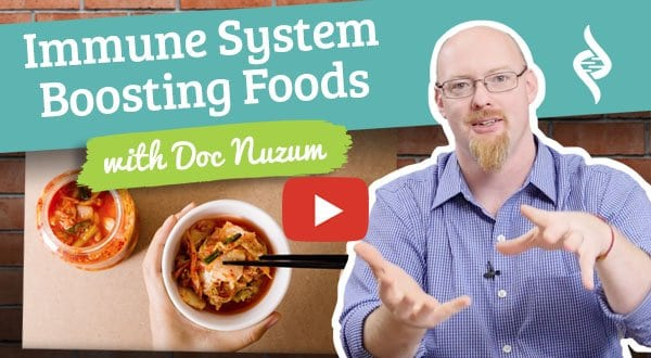 "Immune System Boosting Foods - ""Doc Talks"" with Doctor Daniel Nuzum"