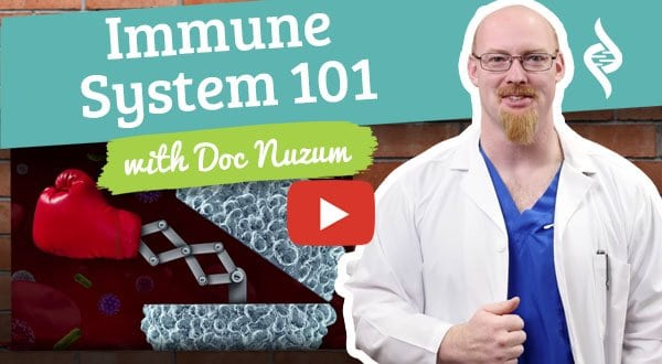 Immune System 101 doc talks