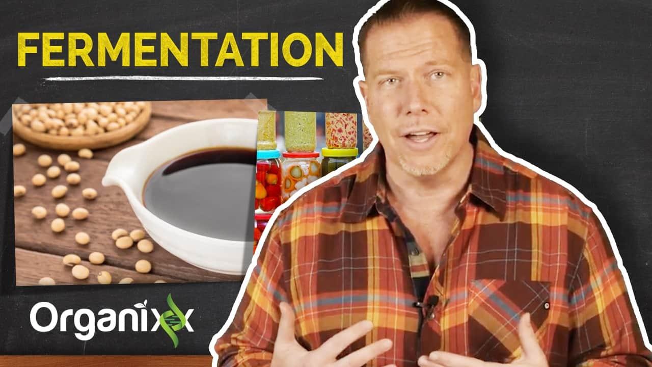 Fermentation Explained by Ty Bollinger