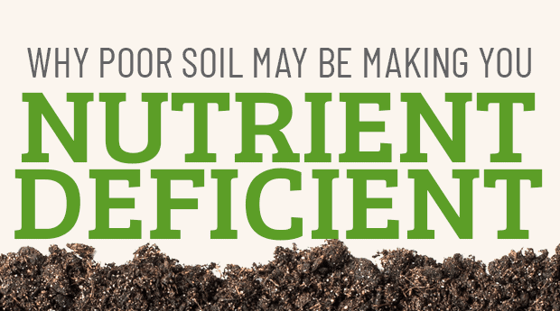 Why Poor Soil is Making Nutrient Deficient
