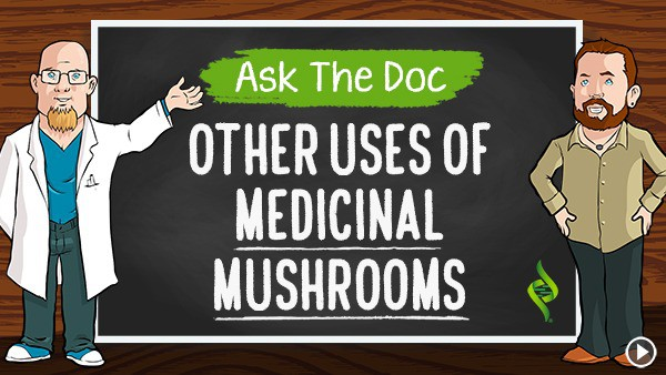 "Other Uses of Medicinal Mushrooms ""Ask the Doc"" with Dr. Daniel Nuzum"