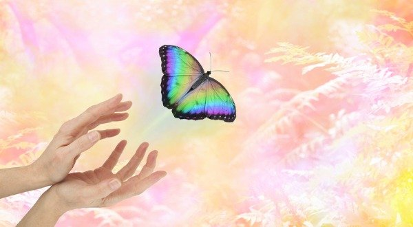 Hands Freeing a Vibrant Butterfly