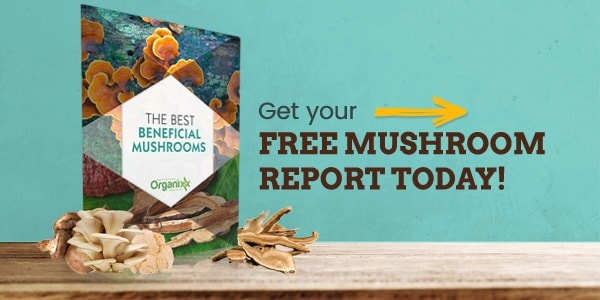 Link to Organixx report on the Best Beneficial Mushrooms