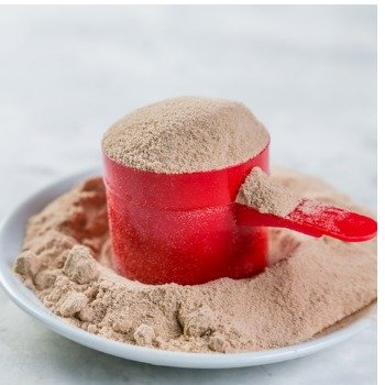 scoop of cricket flour