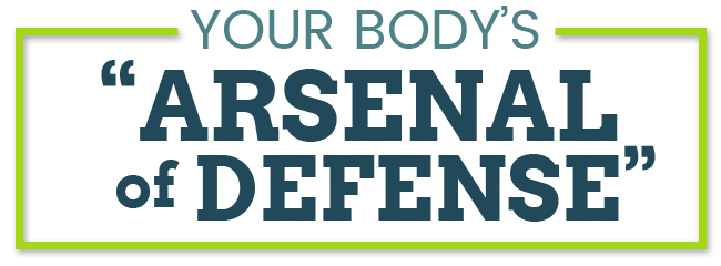 Your Body's Arsenal of Defense